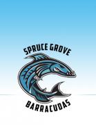 Spruce Grove Barracuda Swim Club