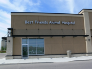 Best Friend's Animal Hospital