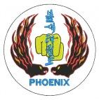 Phoenix Taekwon-do